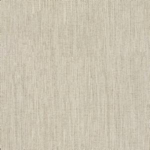 NAOMI-AC_01